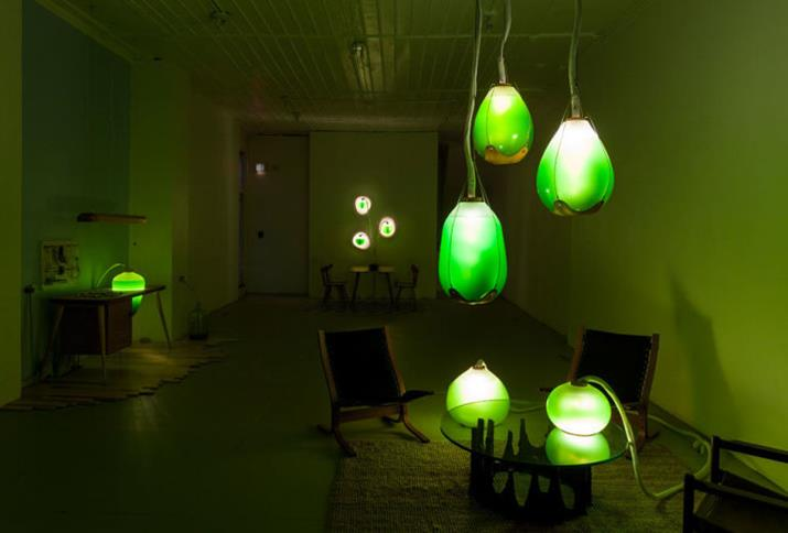 interior design blogs lamps made of algae installation (Copy) You will not believe what these lamps are made of You Will Not Believe What these Lamps are Made Of! interior design blogs lamps made of algae installation Copy 1