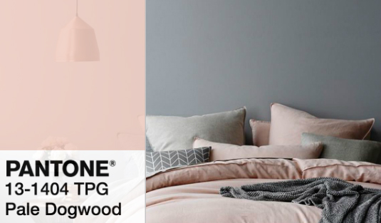 Mood Board: Create a Pastel Home with Pale Dogwood by Pantone pale dogwood Mood Board: Create a Pastel Home with Pale Dogwood by Pantone Mood Board Create a Pastel Home with Pale Dogwood by Pantone feat