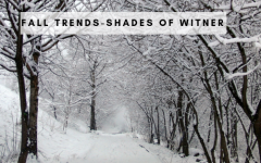 fall trends Fall Trends – Shades Of Winter shade winter 240x150