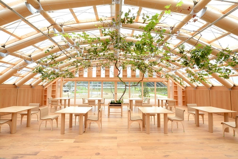 Eco-Friendly Design 🌳 Get To Know This Amazing Paper Green House in Japan, By Shigeru Ban! shigeru ban Eco-Friendly Design 🌳 Get To Know This Amazing Paper Green House in Japan, By Shigeru Ban! 1 19