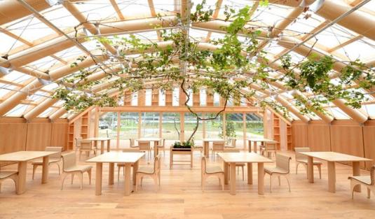 shigeru ban Eco-Friendly Design 🌳 Get To Know This Amazing Paper Green House in Japan, By Shigeru Ban! foto capa cl 15